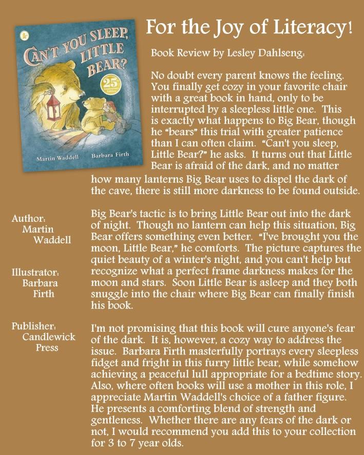 Can't You Sleep Little Bear Review